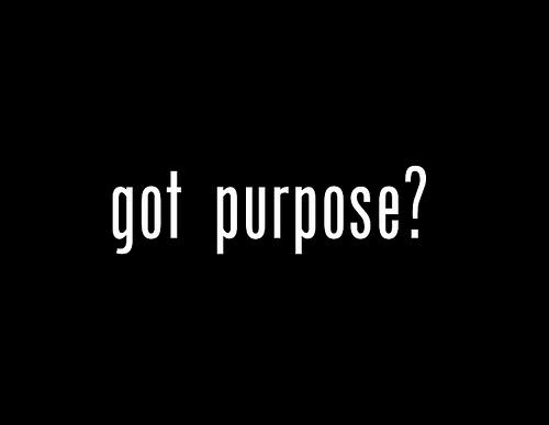 Purpose - got purpose?